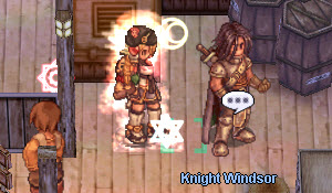 step-2-knight-winsor