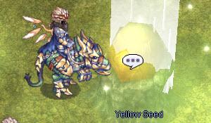 yellow-seed